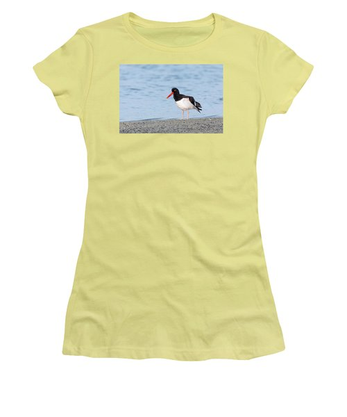 American Oystercatcher Women's T-Shirt (Athletic Fit)
