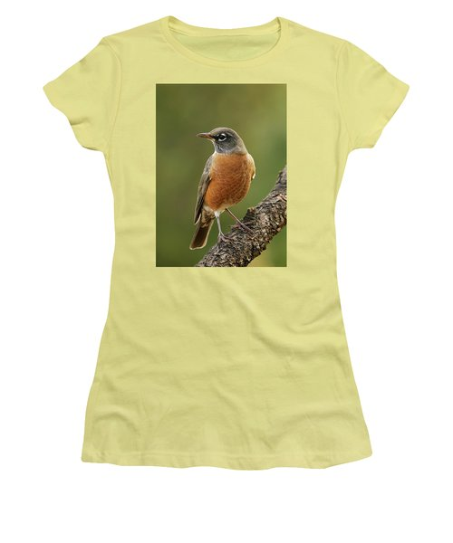 Women's T-Shirt (Junior Cut) featuring the photograph American Robin by Doug Herr