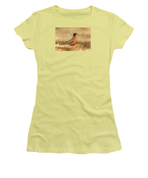 American Robin Women's T-Shirt (Junior Cut) by Ram Vasudev