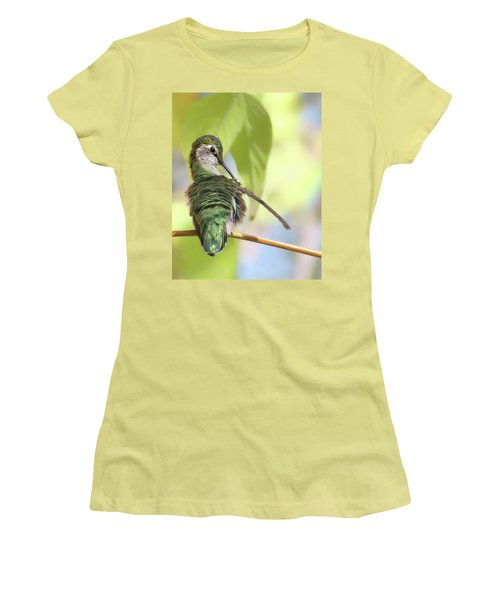 Anna's Hummingbird - Preening Women's T-Shirt (Athletic Fit)