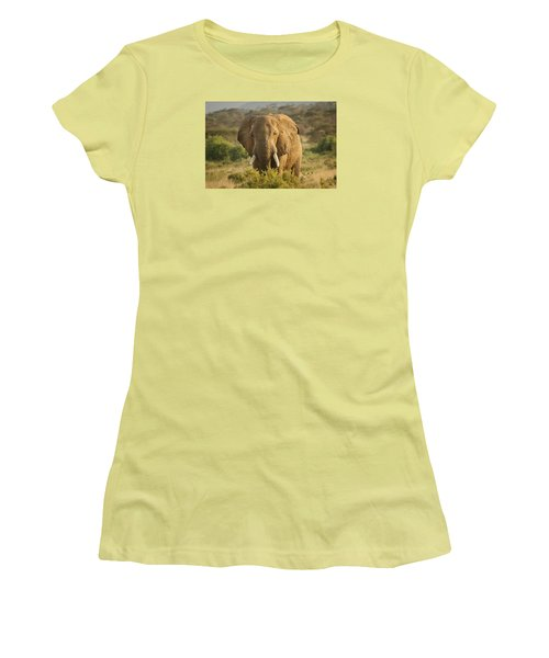 Women's T-Shirt (Junior Cut) featuring the photograph Are You Looking At Me? by Gary Hall
