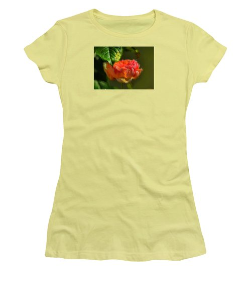 Artistic Rose And Leaf Women's T-Shirt (Junior Cut) by Leif Sohlman