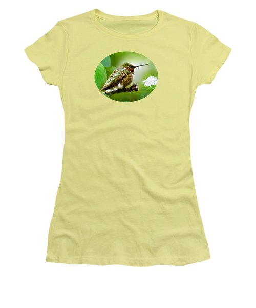 Male Ruby-throated Hummingbird At Rest Women's T-Shirt (Athletic Fit)