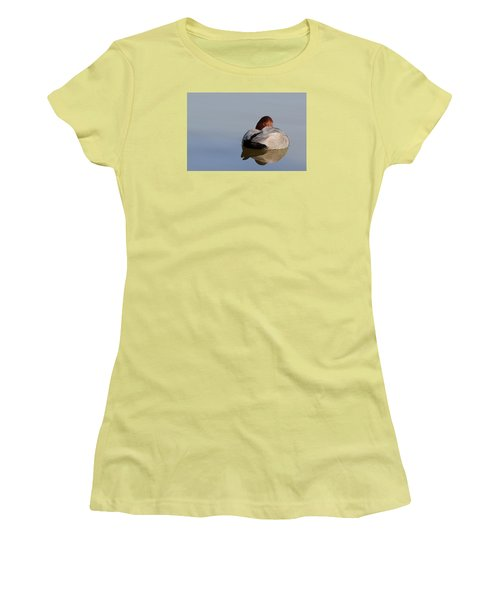 At Rest Women's T-Shirt (Junior Cut) by Richard Patmore