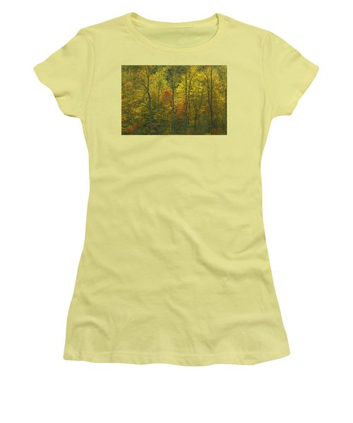 At The Edge Of The Forest Women's T-Shirt (Junior Cut) by Ulrich Burkhalter