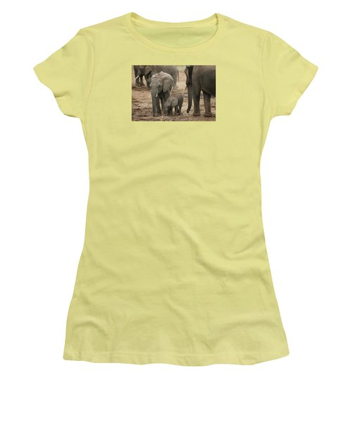 Women's T-Shirt (Junior Cut) featuring the photograph At The Salt Lick 2 by Gary Hall