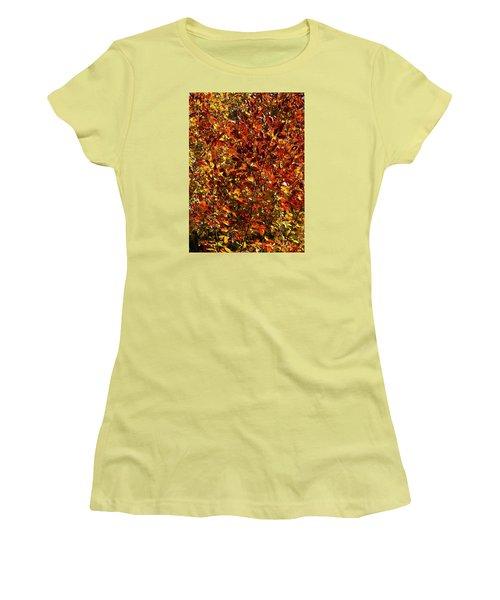 Women's T-Shirt (Junior Cut) featuring the photograph Autumn Colors by Karen Harrison