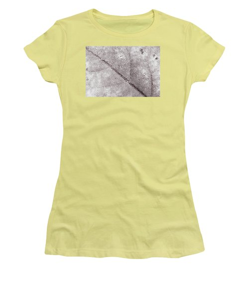 Women's T-Shirt (Athletic Fit) featuring the photograph Autumn Leaves Changing Color During October - November For Fall  by Jingjits Photography