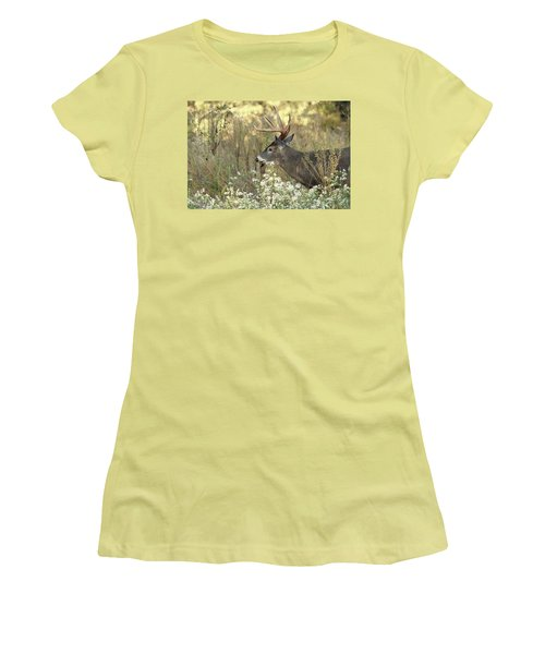 Autumn Whitetail In The Smokies Women's T-Shirt (Junior Cut) by TnBackroadsPhotos