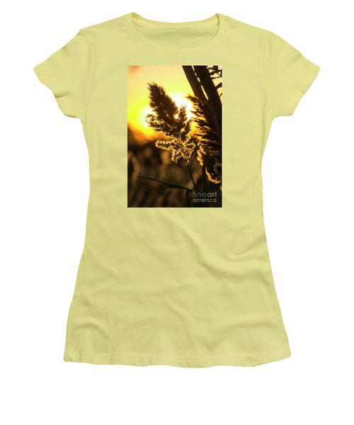 Women's T-Shirt (Junior Cut) featuring the photograph Backlit By The Sunset by Zawhaus Photography