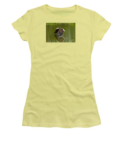 Bald Eagle In Low Flight Over A Lake Women's T-Shirt (Junior Cut) by Les Palenik