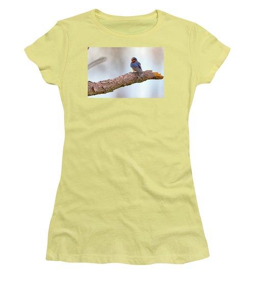 Barn Swallow On Assateague Island Women's T-Shirt (Junior Cut) by Rick Berk