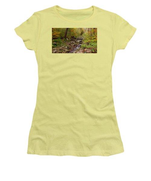 Baxter's Hollow II Women's T-Shirt (Junior Cut) by Kimberly Mackowski