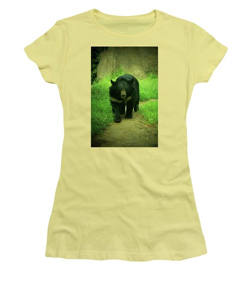 Bear On The Prowl Women's T-Shirt (Junior Cut) by Trish Tritz