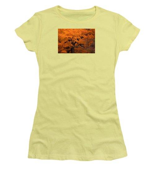Beautiful Orange Tree On A Fall Day Women's T-Shirt (Junior Cut)