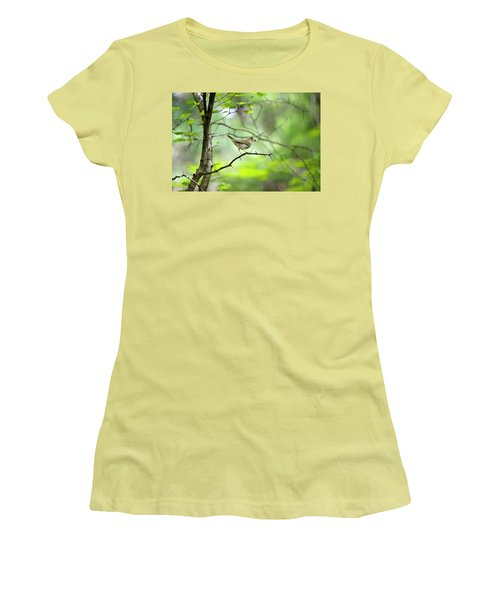 Beauty Of The Spring Forest Women's T-Shirt (Athletic Fit)