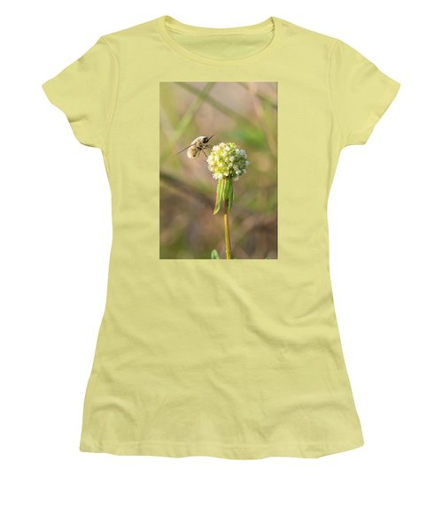 Bee Fly On A Wildflower Women's T-Shirt (Junior Cut) by Christopher L Thomley
