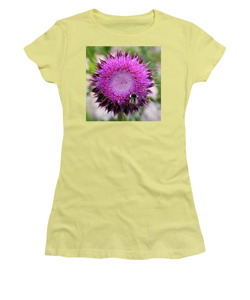 Women's T-Shirt (Athletic Fit) featuring the photograph Bee On Thistle by David Chandler