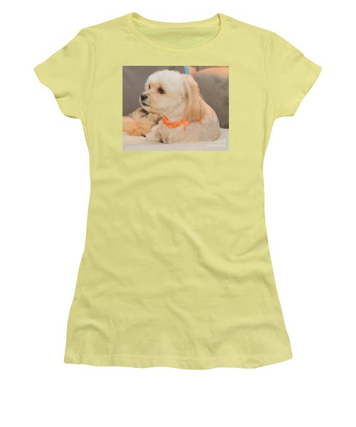Benji On The Look Out Women's T-Shirt (Athletic Fit)