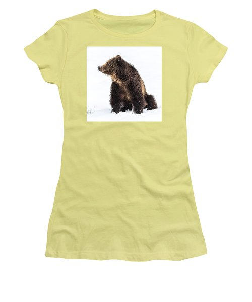 Women's T-Shirt (Junior Cut) featuring the photograph Beryl Springs Grizzly Sow In Snow by Yeates Photography
