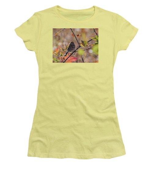Bird In  Tree Women's T-Shirt (Athletic Fit)