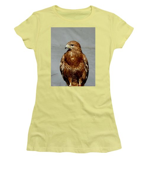 Bird Of Prey  Women's T-Shirt (Athletic Fit)
