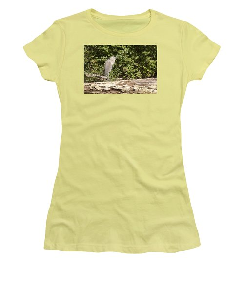 Bird On A Log Women's T-Shirt (Athletic Fit)