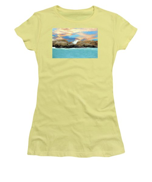 Birds On Ocean Rocks Women's T-Shirt (Athletic Fit)