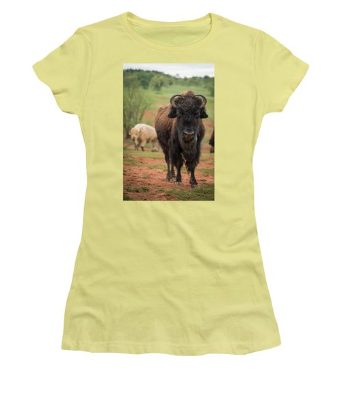 Women's T-Shirt (Athletic Fit) featuring the photograph Bison 6 by Joye Ardyn Durham