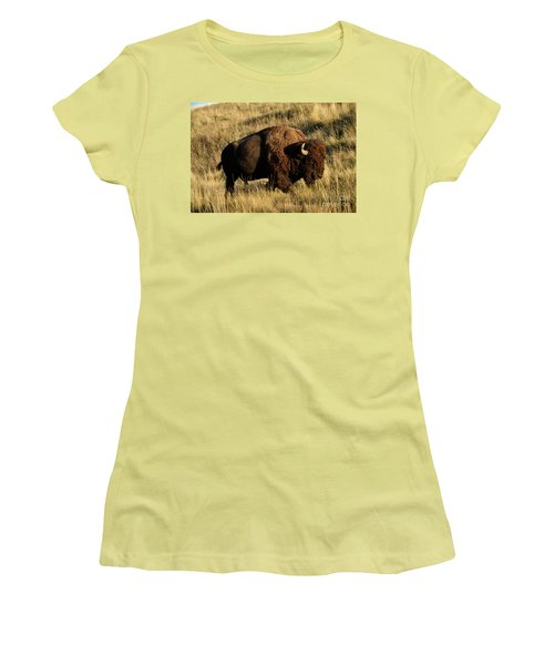 Bison  Women's T-Shirt (Junior Cut) by Cindy Murphy - NightVisions