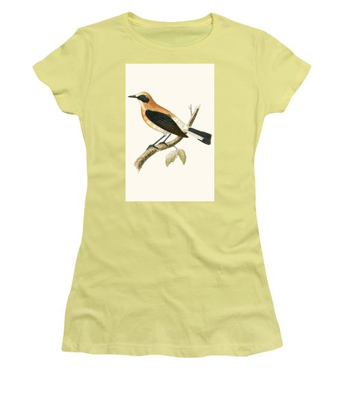 Black Eared Wheatear Women's T-Shirt (Athletic Fit)