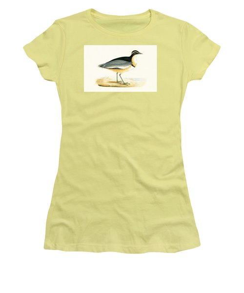 Black Headed Plover Women's T-Shirt (Athletic Fit)