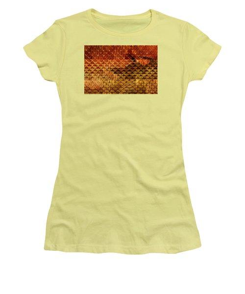 Black Mountain Women's T-Shirt (Junior Cut) by Don Gradner