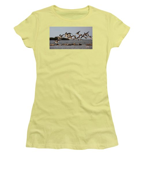 Black Skimmers In Flight Women's T-Shirt (Athletic Fit)