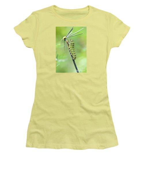 Black Swallowtail Caterpillar Women's T-Shirt (Junior Cut) by Debbie Green