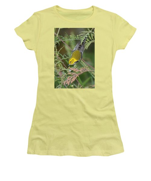 Black-throated Green Intent Women's T-Shirt (Junior Cut) by Alan Lenk