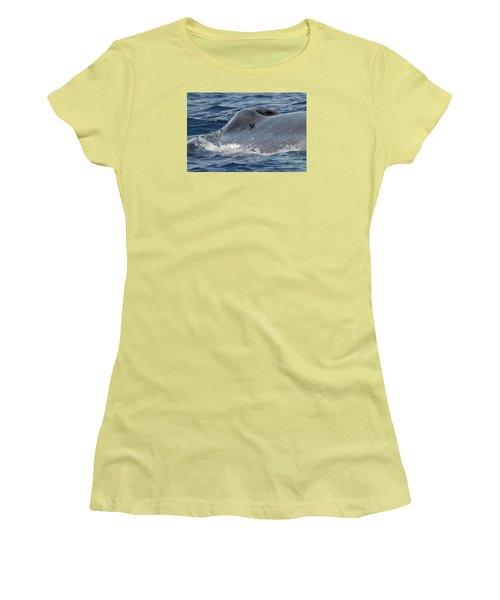 Blue Whale Head Women's T-Shirt (Junior Cut) by Loriannah Hespe