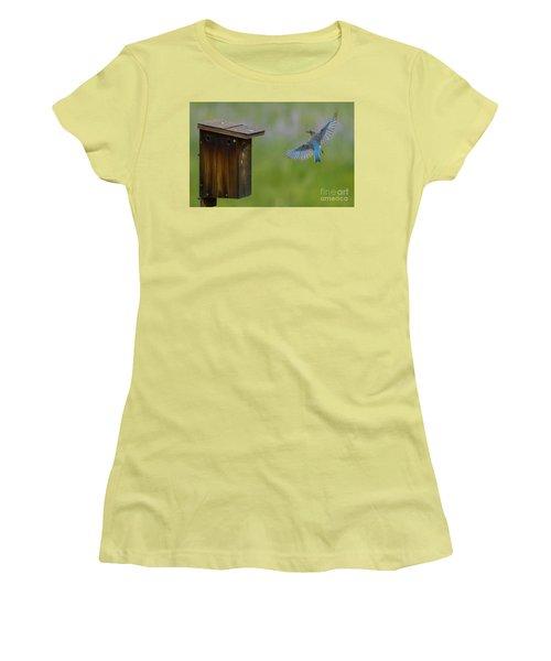 Bluebird Feeding Time Women's T-Shirt (Athletic Fit)