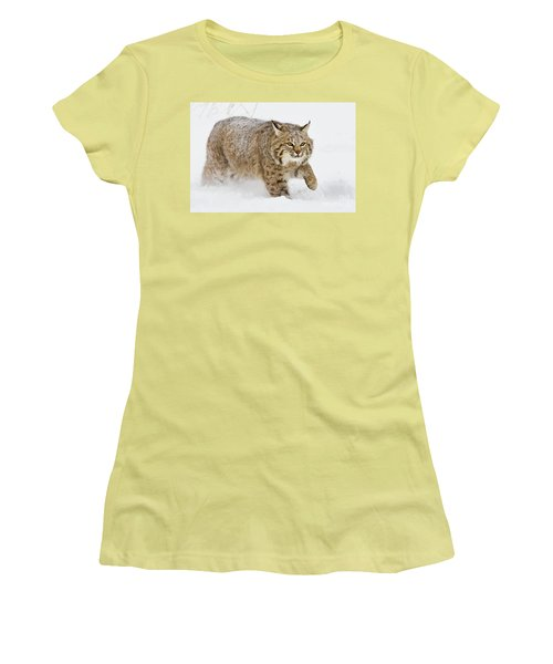 Bobcat In Snow Women's T-Shirt (Junior Cut) by Jerry Fornarotto