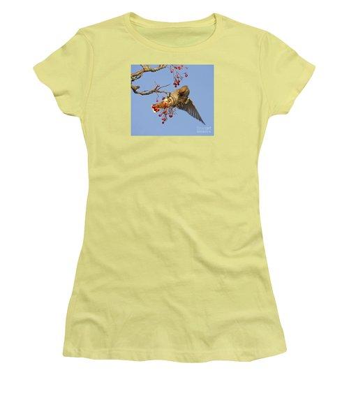 Bohemian Waxwing Women's T-Shirt (Junior Cut) by Liz Leyden
