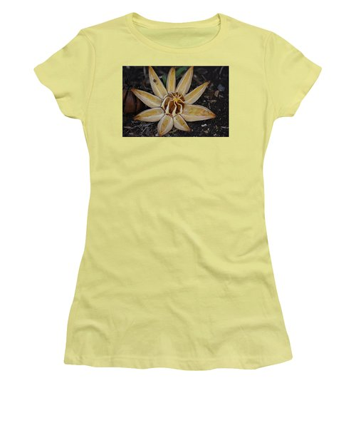 Botanical Garden Seed Pod Women's T-Shirt (Athletic Fit)