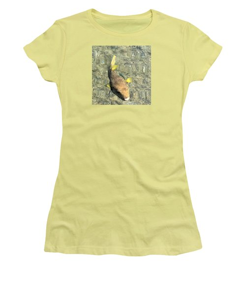 Box Fish - 2 Women's T-Shirt (Junior Cut) by Karen Nicholson
