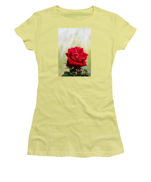 Bright Red Rose Women's T-Shirt (Junior Cut) by Perry Van Munster
