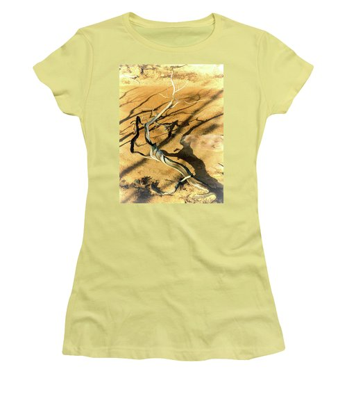 Brins Mesa 07-100 Burnt Women's T-Shirt (Junior Cut) by Scott McAllister