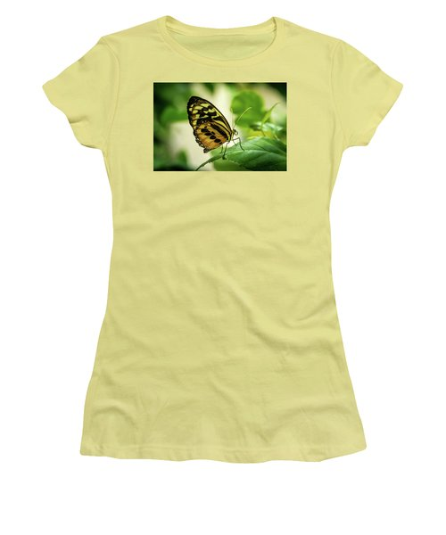 Brown And Black Tropical Butterfly Resting Women's T-Shirt (Athletic Fit)