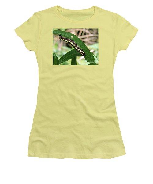 Brown Hooded Owlet Moth Larva  Women's T-Shirt (Junior Cut) by Gena Weiser