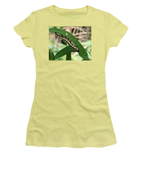 Brown Hooded Owlet Moth Larva  Women's T-Shirt (Athletic Fit)