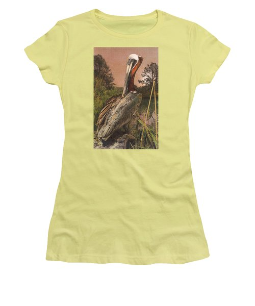 Brown Pelican Women's T-Shirt (Athletic Fit)