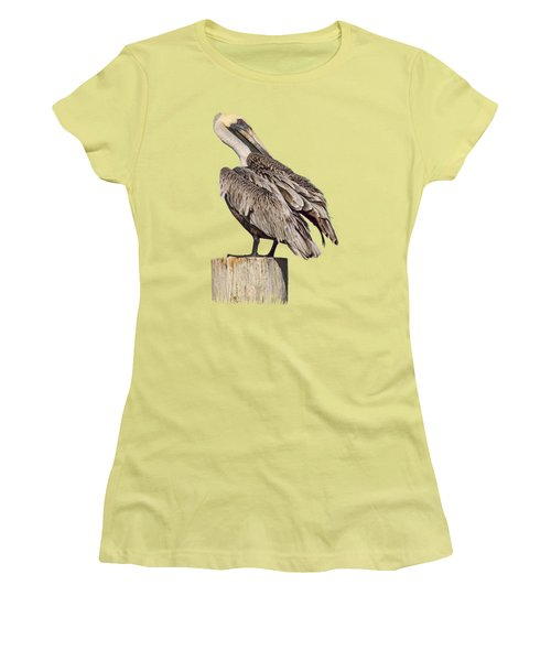 Women's T-Shirt (Junior Cut) featuring the photograph Brown Pelican - Preening - Transparent by Nikolyn McDonald