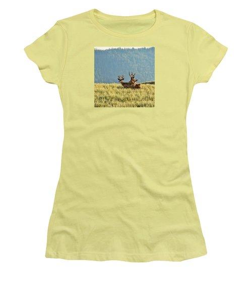 Buck Mule Deer In Velvet Women's T-Shirt (Junior Cut) by Daniel Hebard